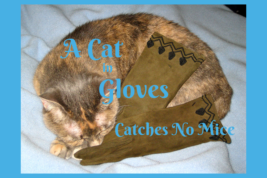 Are You A Cat In Gloves?